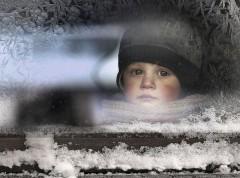 animal-children-photography-elena-shumilova-4.jpg