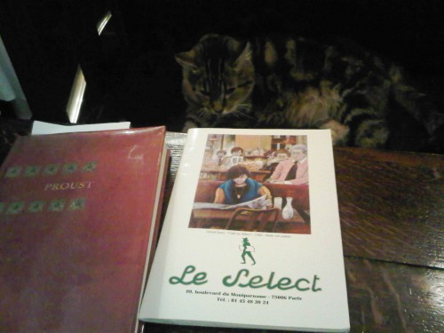 le select, mickey, chat, select, montparnasse, paris